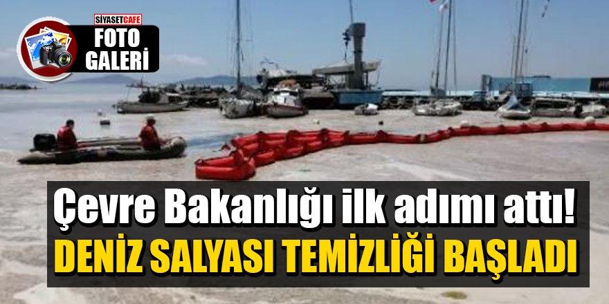 Çevre Bakanlığı ilk adımı attı! Deniz salyası temizliği başladı