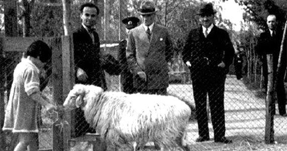 Atatürk albümü 9