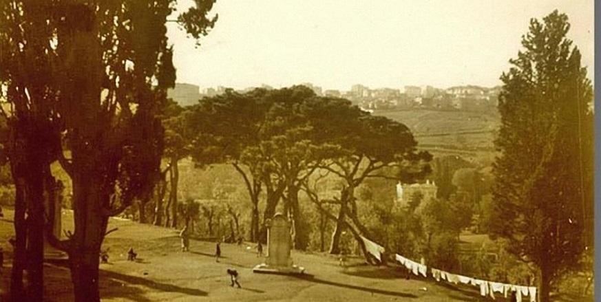 Eski İstanbul'dan muhteşem kareler 9