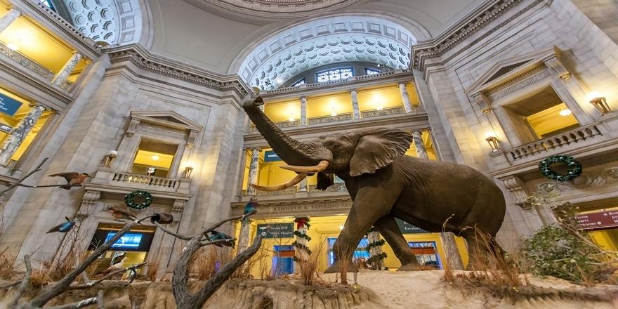 Dünyanın en çok ziyaret yapılan 10 müzesi 9