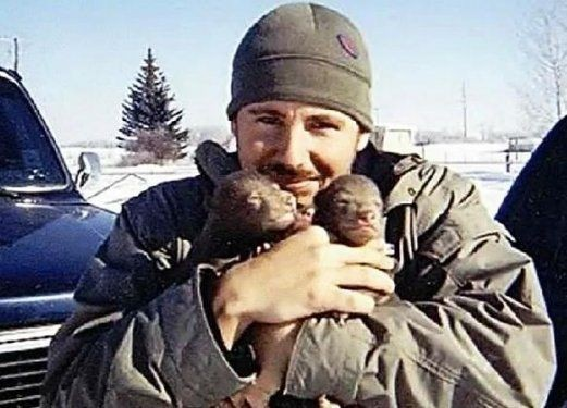 Alaska'da  2 ayı yavrusu yetiştirdi 3