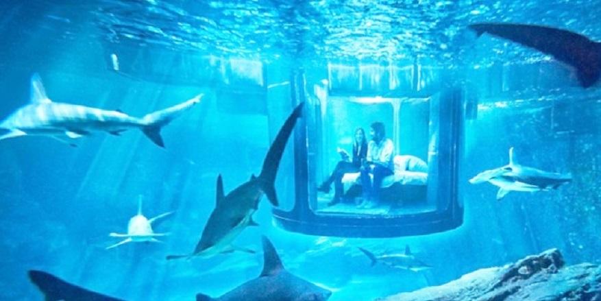 Dünyanın 10 fantastik su altı oteli 5