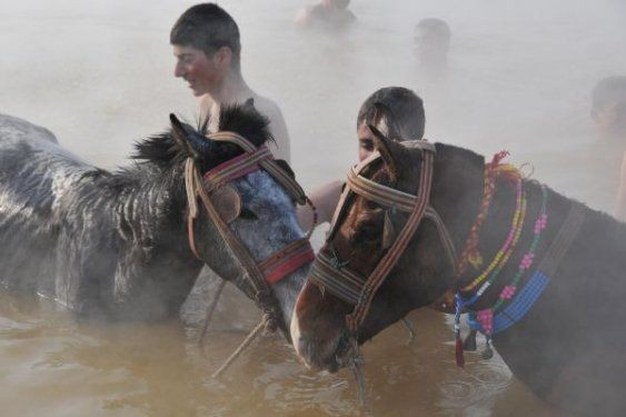 Muş'ta atlarıyla birlikte yıkanıyor 4