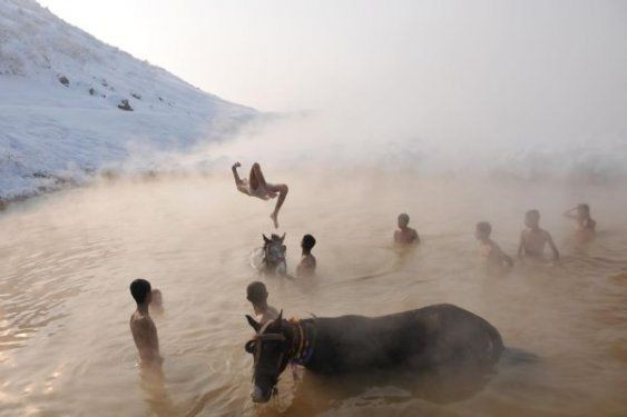 Muş'ta atlarıyla birlikte yıkanıyor 5