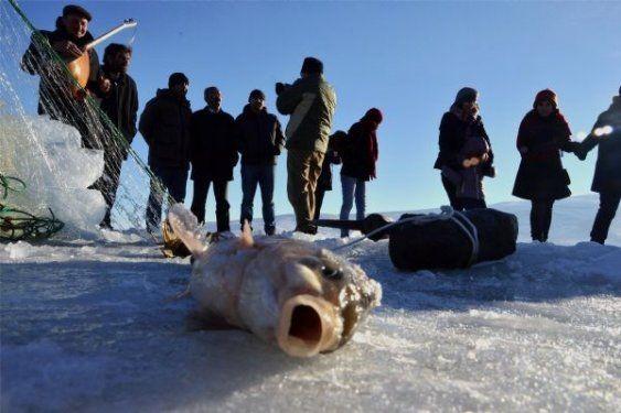 Ardahan'da buz üstünde halay çektiler 8
