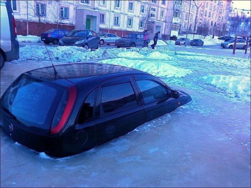 En komik kış fotoğrafları 10