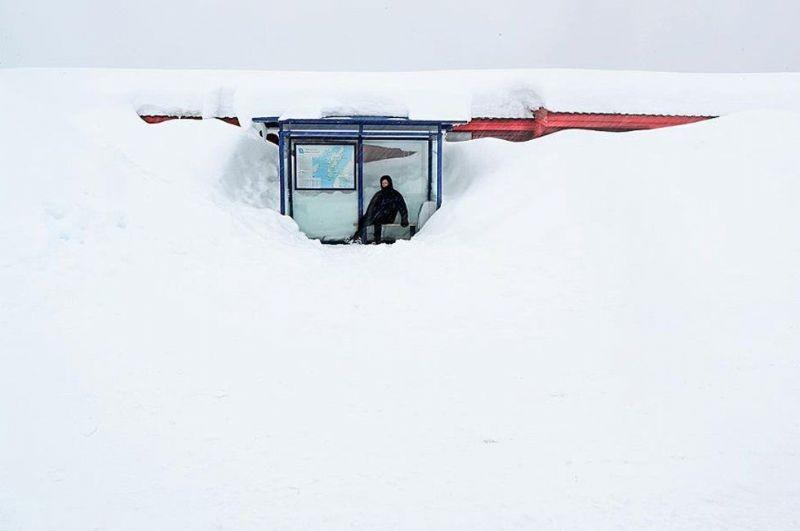 En komik kış fotoğrafları 11
