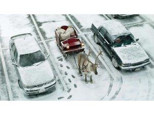 En komik kış fotoğrafları