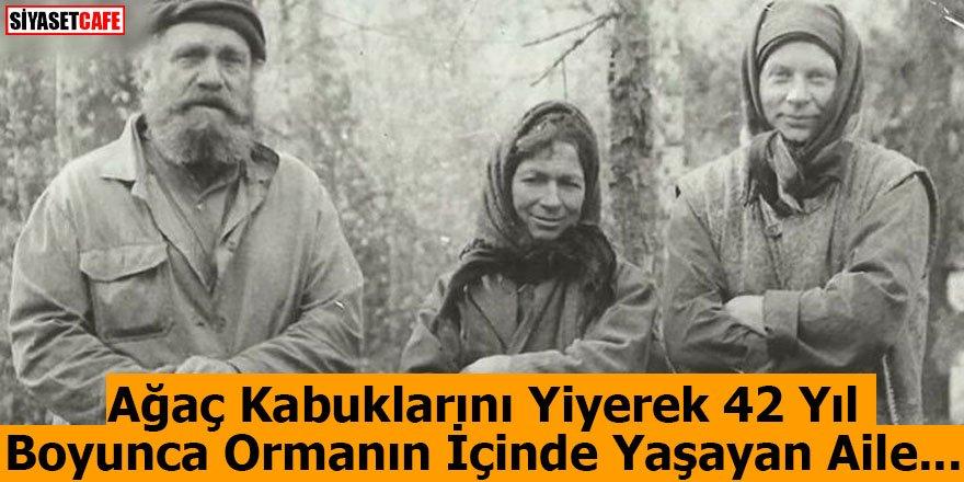 Ağaç Kabuklarını Yiyerek 42 Yıl Boyunca Ormanın İçinde Yaşayan Aile