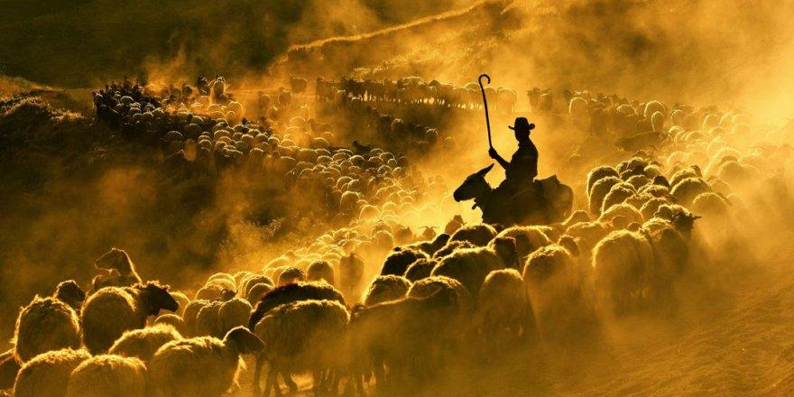 Burası Teksas değil Bitlis Tatvan