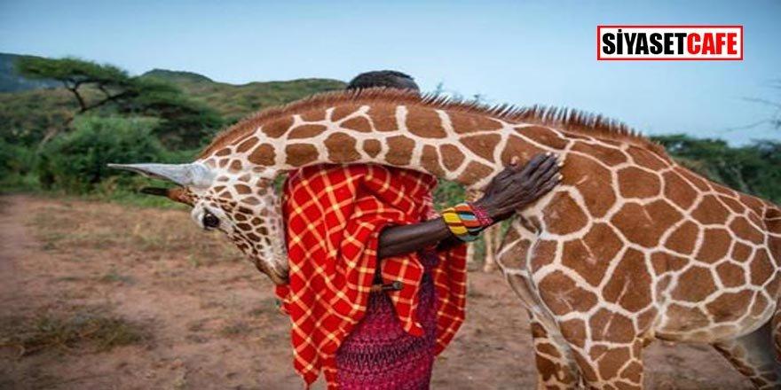National Geographic 2019 En İyi 100 Fotoğrafı Seçti