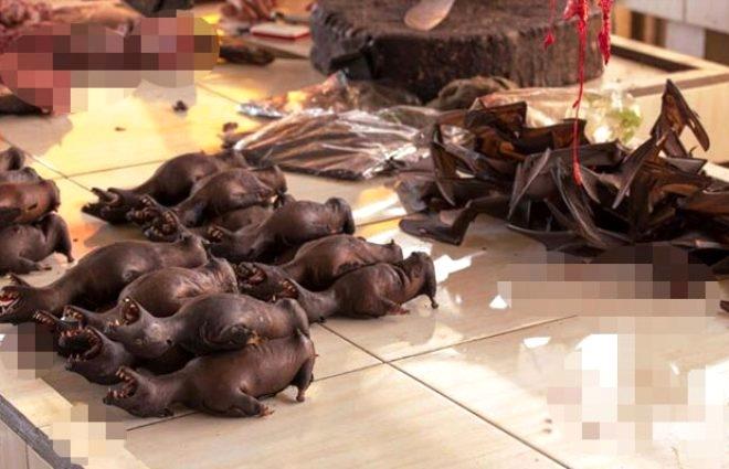 Canlı hayvanların kaynatıldığı hayvan pazarında Korona Virüsü tehlikesi 1