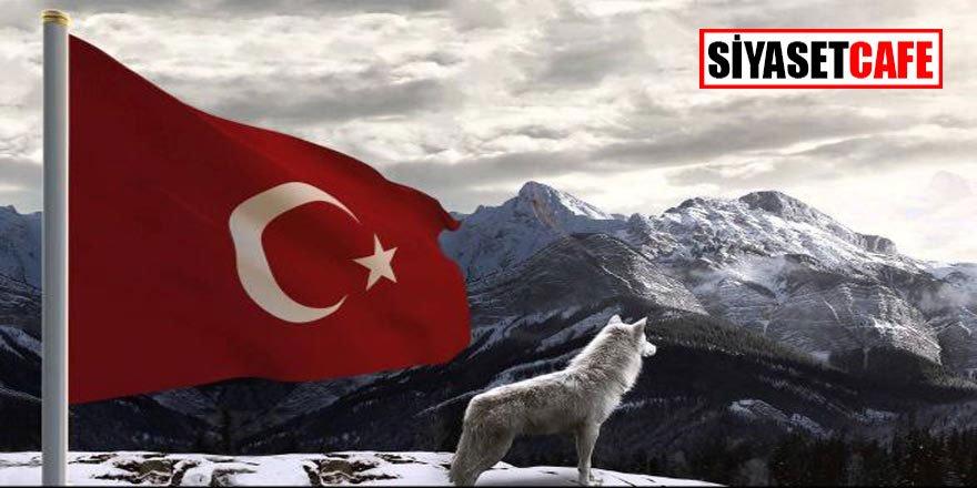 Hangi hayvanlar hangi ülkeleri temsil ediyor?