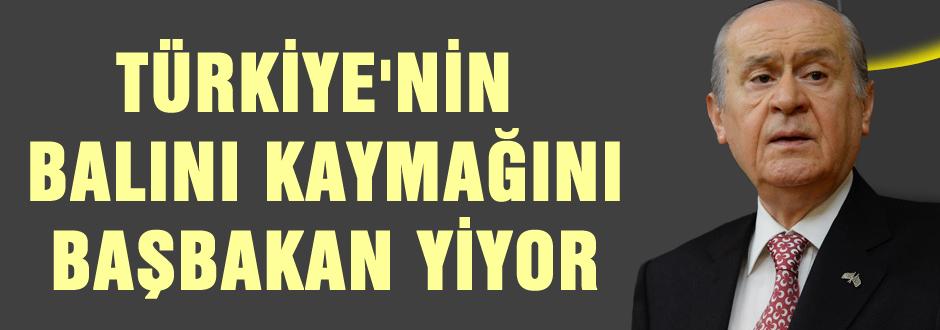 Türkiye'nin balını kaymağını Başbakan yiyor