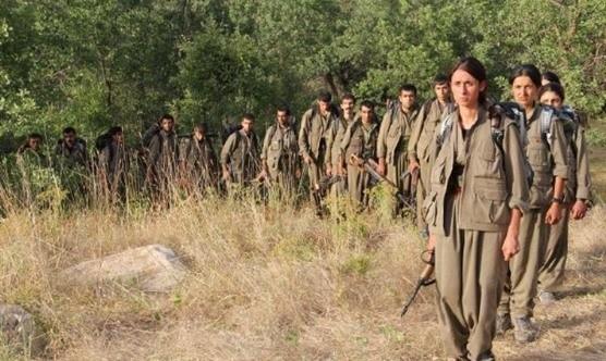 Eğer o ülke olmasaydı PKK biterdi