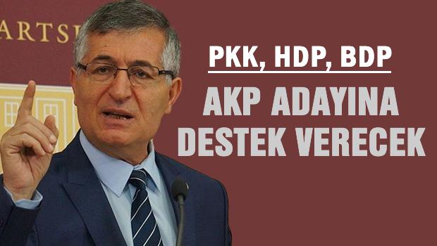 PKK, HDP ve BDP, AKP'ye destek verecek