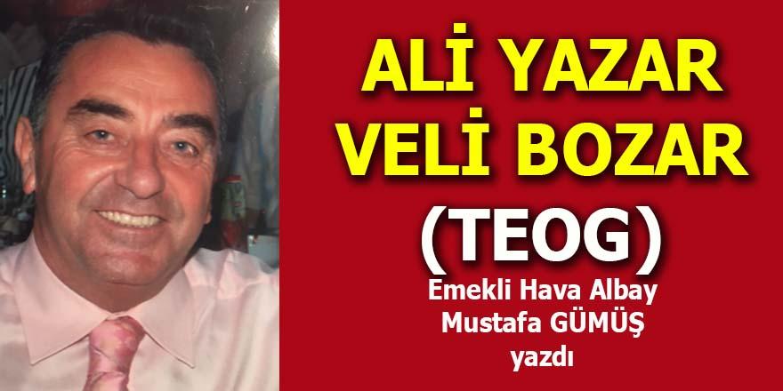 Ali yazar Veli bozar!