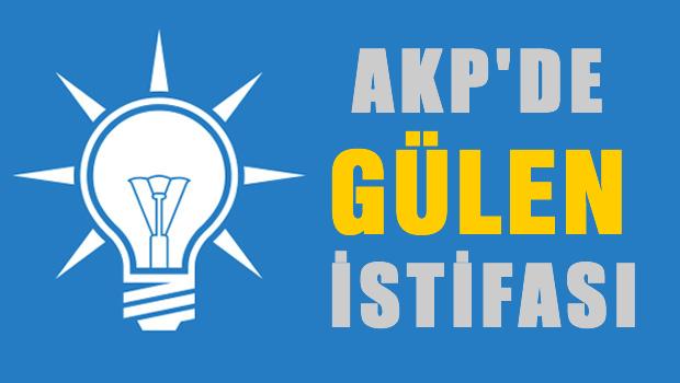 AKP'de Gülen İstifası