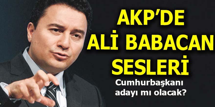 AKP'de Ali Babacan sesleri