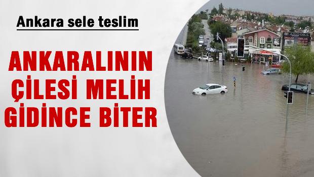 Ankara'nın çilesi Melih gidince biter