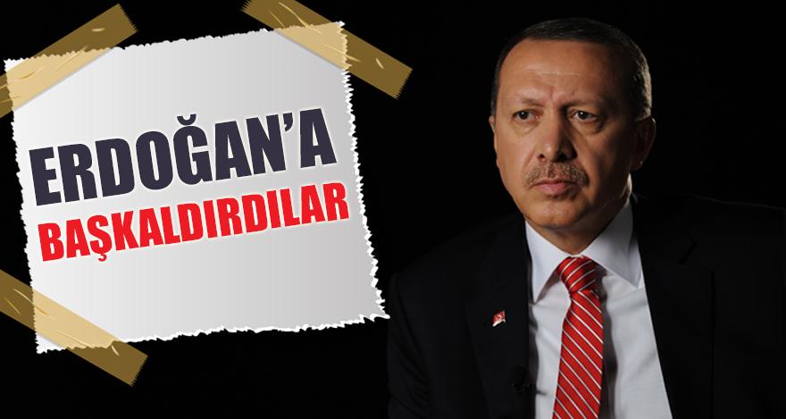 Erdoğan'a başkaldırdılar