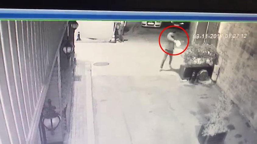 İstanbul'da bir  maganda kediye kurşun yağdırdı-VİDEO-
