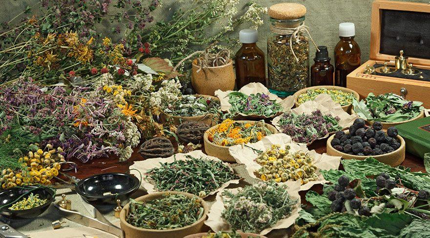 Bitkisel ilaçları doktorlar mı yazmalı?