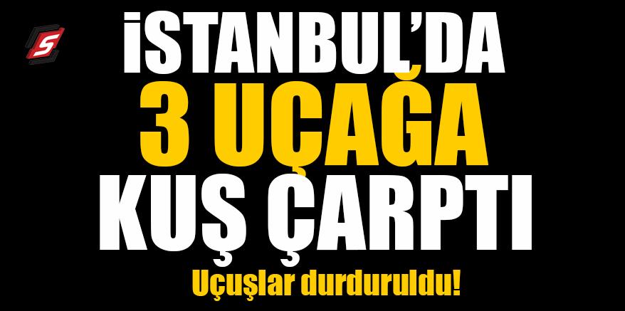 İstanbul'da üç uçağa kuş çarptı! Uçuşlar durduruldu