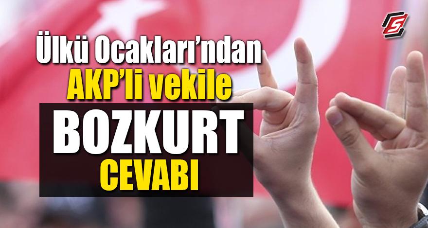 Ülkü Ocakları'ndan AKP'li vekile Bozkurt cevabı