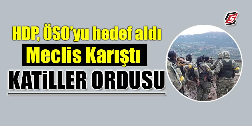 HDP, ÖSO'yu hedef aldı, Meclis karıştı! 'Katiller ordusu'