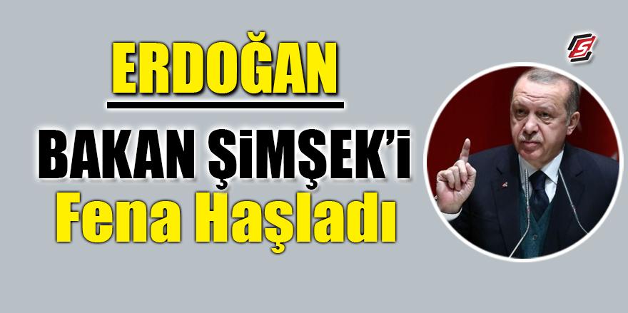 Erdoğan, Bakan Şimşek'i fena haşladı