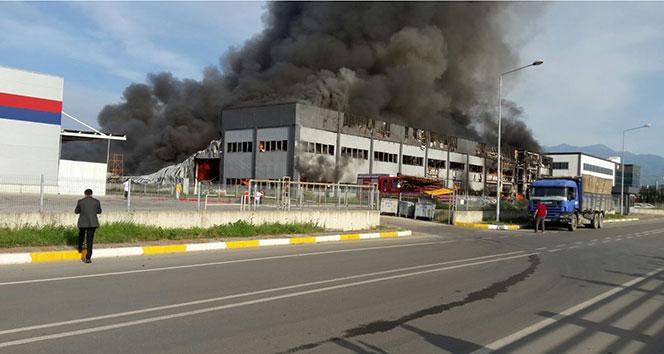 Dev fabrika cayır cayır yandı!