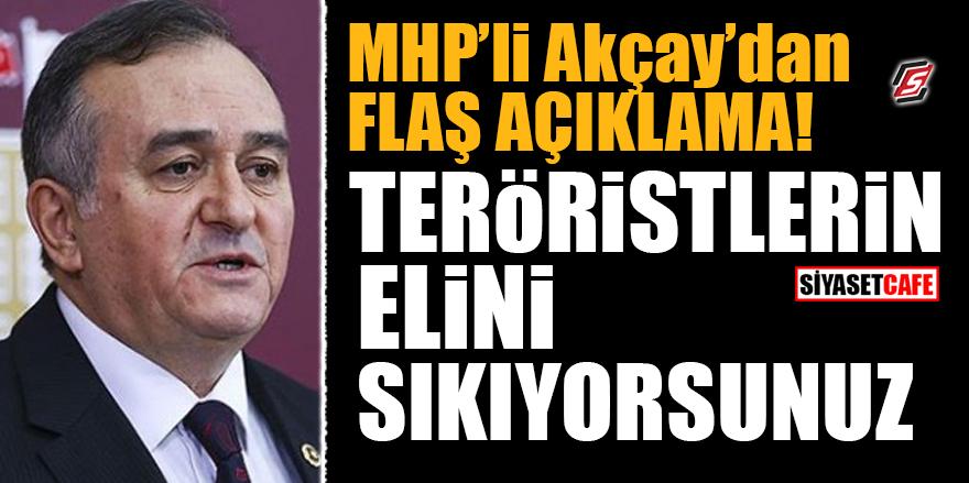 MHP'li Akçay'dan flaş açıklama! Teröristlerin elini sıkıyorsunuz