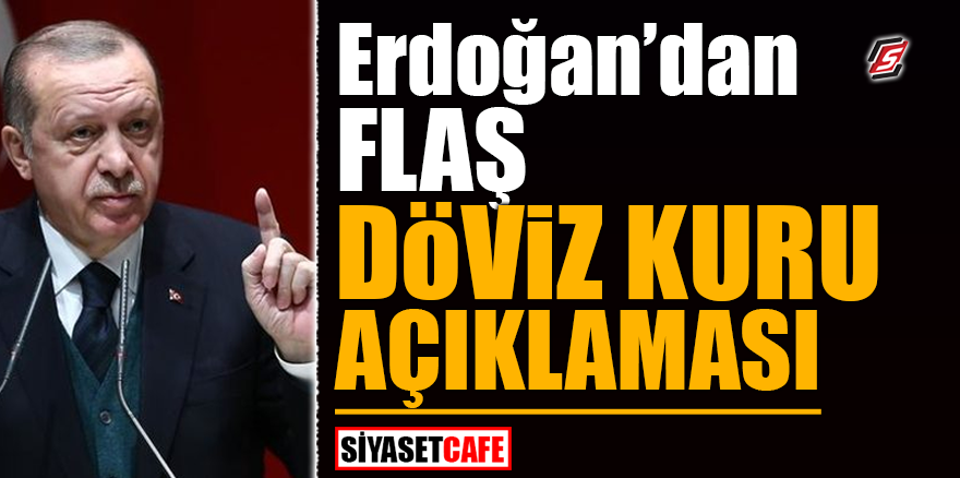Erdoğan'dan flaş döviz kuru açıklaması
