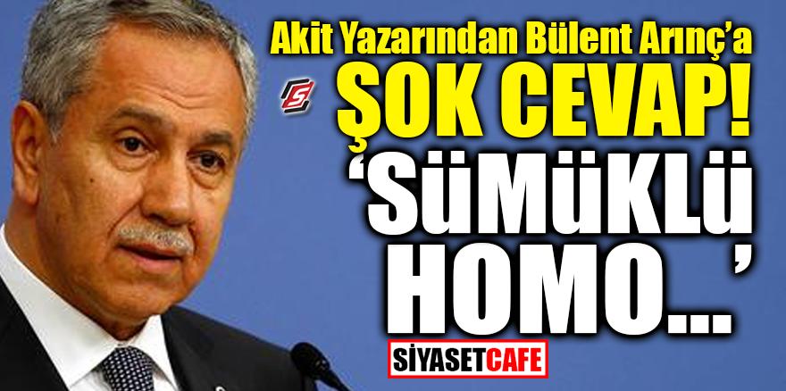 """Akit yazarından Bülent Arınç'a şok cevap! """"Sümüklü homo..."""""""