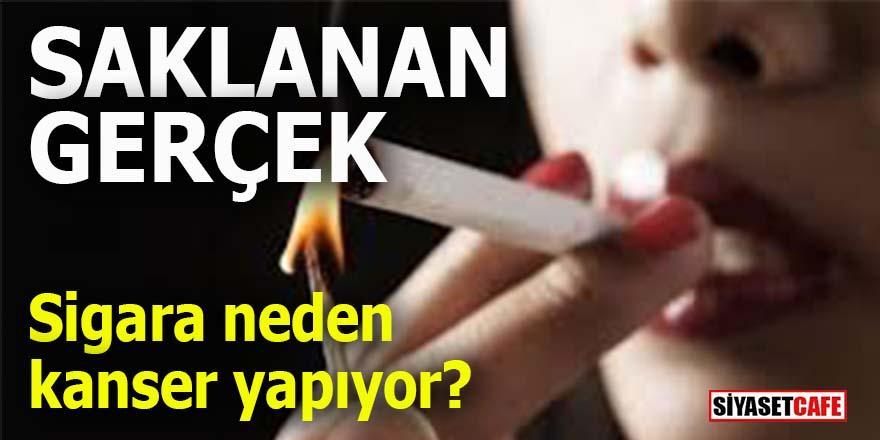 Sigara neden kanser yapıyor? Saklanan gerçek!