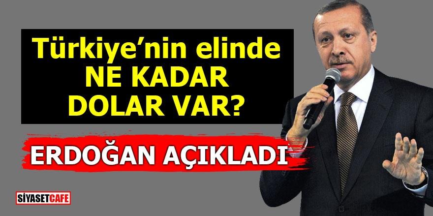 Türkiye'nin elinde ne kadar dolar var? Erdoğan açıkladı