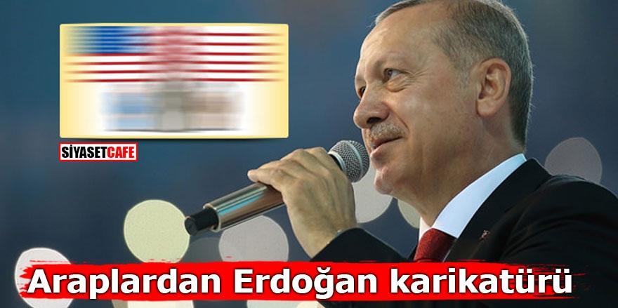 Araplardan Erdoğan karikatürü
