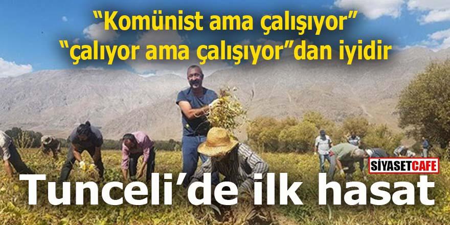 """""""Komünist ama çalışıyor"""", """"çalıyor ama çalışıyordan"""" iyidir: Tunceli'de ilk hasat"""