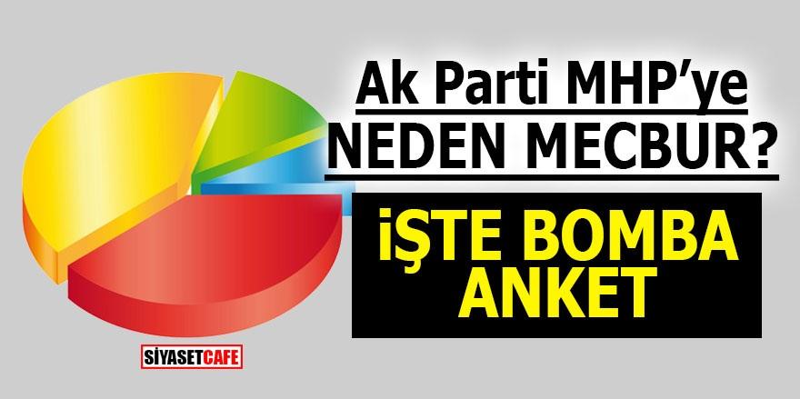 AK Parti MHP'ye neden mecbur? İşte bomba anket