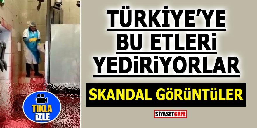 Türkiye'ye bu etleri yediriyorlar! SKANDAL GÖRÜNTÜLER