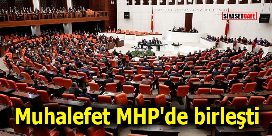 Muhalefet MHP'de birleşti