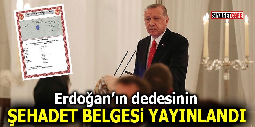 Erdoğan'ın dedesinin şehadet belgesi yayınlandı