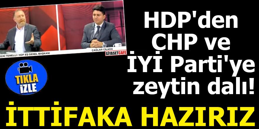 HDP'den CHP ve İYİ Parti'ye zeytin dalı! İTTİFAKA HAZIRIZ
