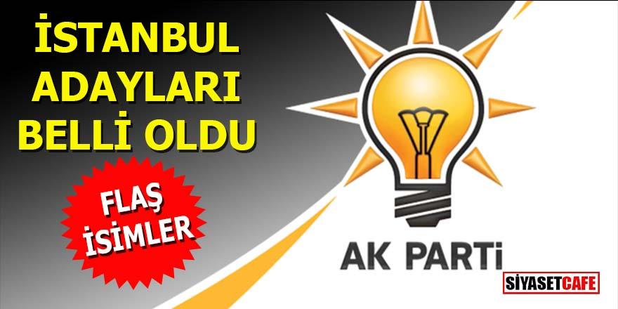 AK Parti İstanbul adayları