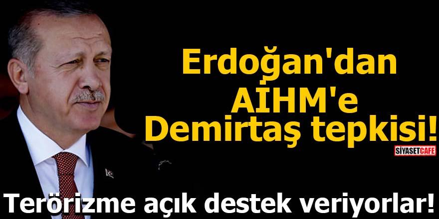 Erdoğan'dan AİHM'e Demirtaş tepkisi! Terörizme açık destek veriyorlar