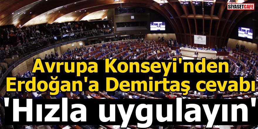 Avrupa Konseyi'nden Erdoğan'a Demirtaş cevabı: 'Hızla uygulayın'