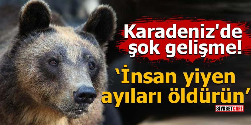 Karadeniz'de şok gelişme! İnsan yiyen ayıları öldürün
