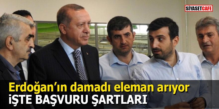 Cumhurbaşkanı Erdoğan'ın damadı Selçuk Bayraktar sosyal medyadan iş ilanı verdi