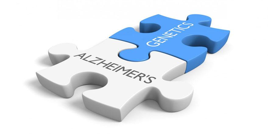 Alzheimer  dosyasını açtık; Alzheimer tanısı,seyri,tedavisi ve bakımı